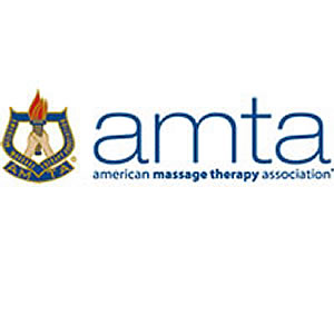 Vote for new AMTA-HI Board Members